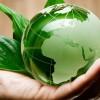 Approvato il modello di dichiarazione ambientale per l'anno 2013
