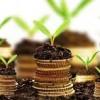 AVVISO PUBBLICO LA PICCOLA DISTRIBUZIONE IN MARCIA VERSO L'INNOVAZIONE Incentivi per l'innovazione delle microimprese commerciali lucane di vendita al dettaglio